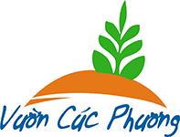 Fucoidan hỗ trợ phòng và điều trị bệnh ung thư